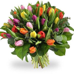 Bouquet de tulipas Multicor