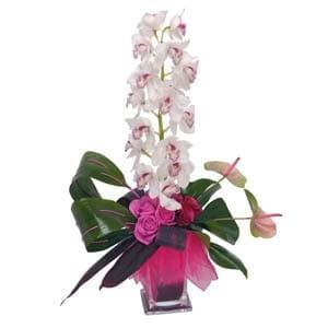Cubo com Orquídea