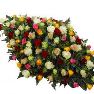 Palma de Rosas Multicor