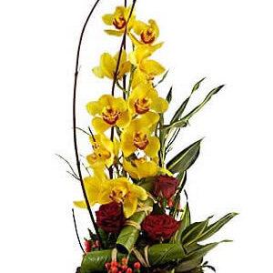 Pote de Zinco com Orquídea