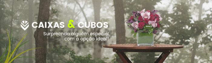 Comprar Flores Online 3