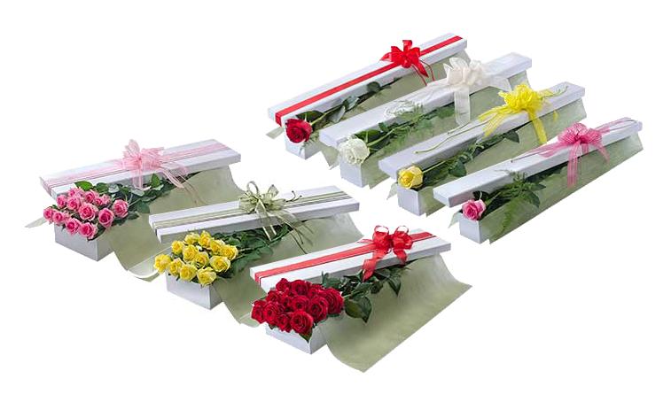 caixas de rosas 4